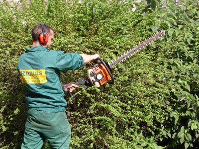 Pielęgnacja i konserwacja zieleni